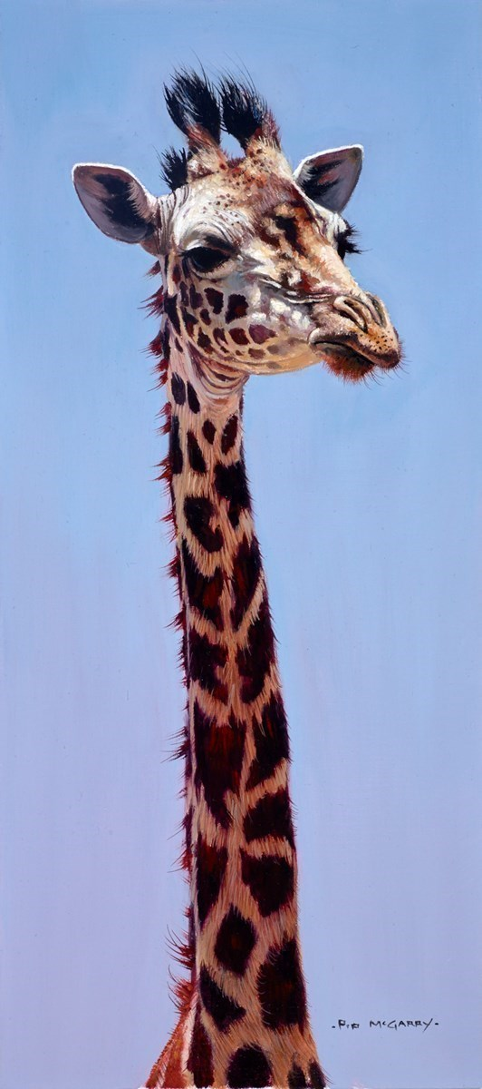 Maasai Giraffe by Pip McGarry -  sized 8x18 inches. Available from Whitewall Galleries